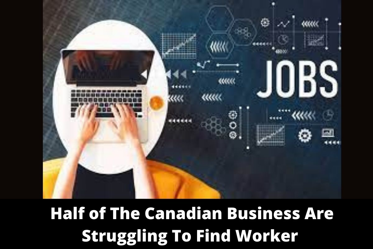 Half of The Canadian Business Are Struggling To Find Worker